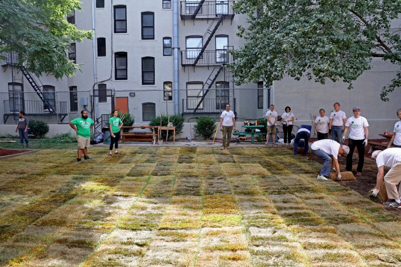 The lawn is complete! ©John Chu for KPF